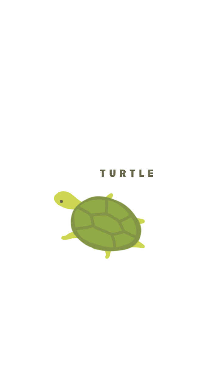 Green and Turtle