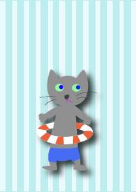cat(summer)