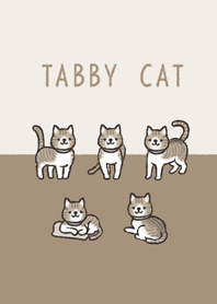 Doodle brown tabby and white cat