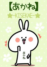 Akane usagi green Theme