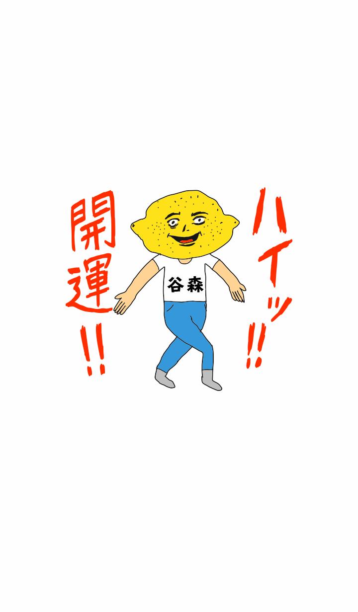 HeyKaiun TANIMORI no.11720