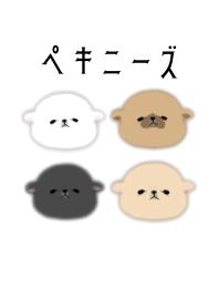 peki_moco.motch