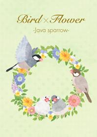 Bird x Flower -Java sparrow-