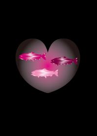 Beautiful deep-sea fish in love