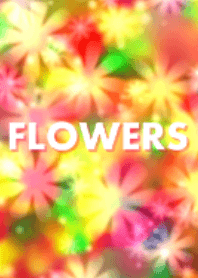 FLOWERS ~Happy color~