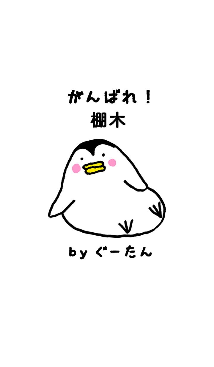TANAKI g.no.8093