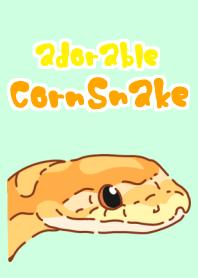 Adorable CornSnake