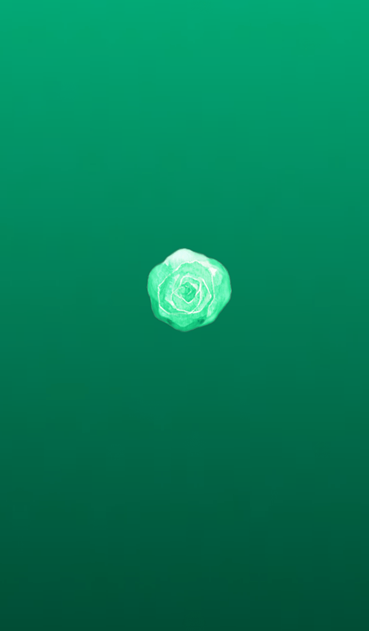 Simple cabbage 2