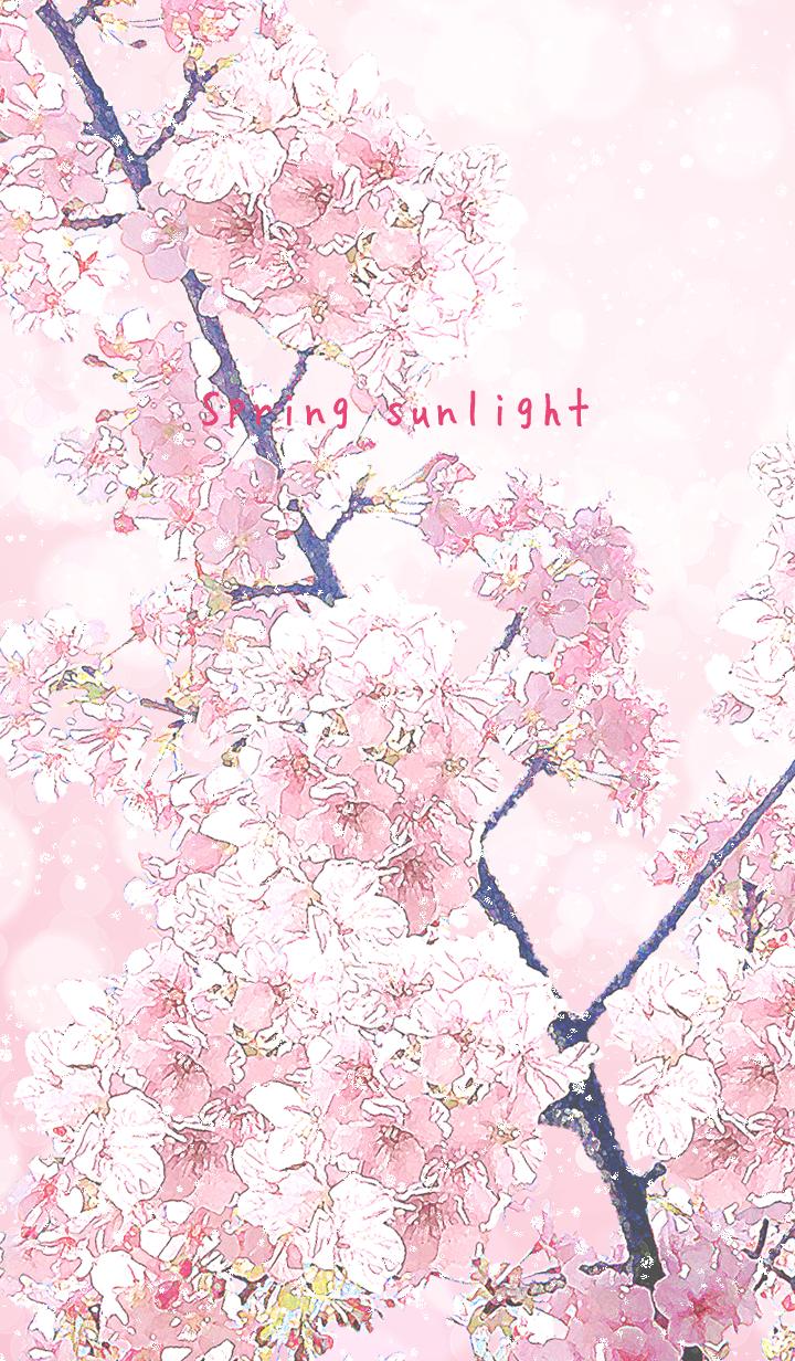 Spring sunlight -SAKURA02