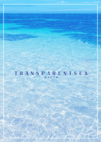 - TRANSPARENT SEA - HAWAII 15