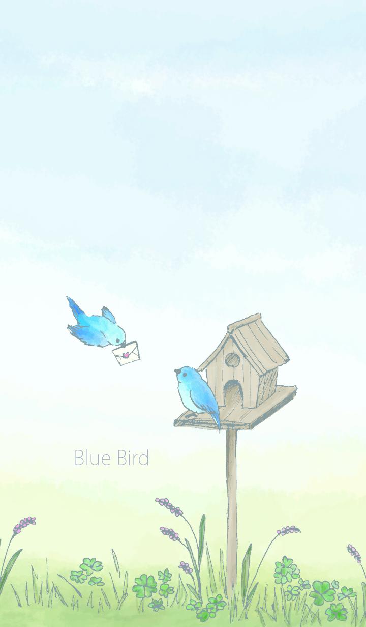 藍鳥/綠 19