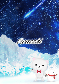 Iwasaki Polar bear winter night sky