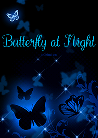晚上的蝴蝶 .