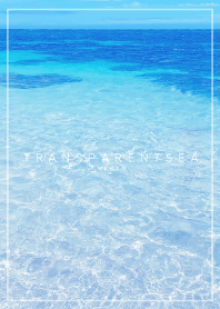 TRANSPARENT SEA