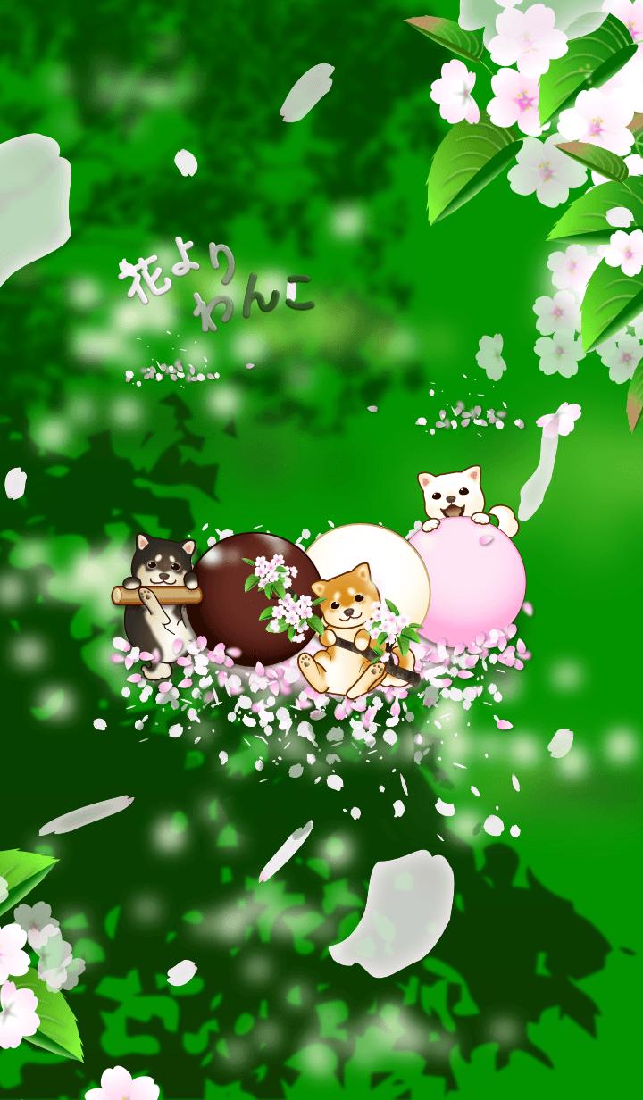 Dogs over Flowers4 (sakura, summer)