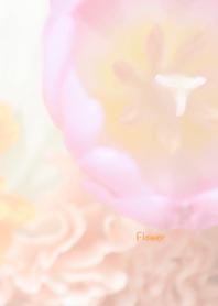 Flower Theme 48