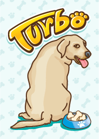 Turbo and friends
