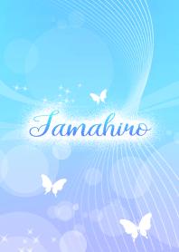 Tamahiro skyblue butterfly ...