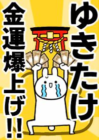 Fortune rise rabbiit[Yukitake]