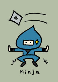 Ninja Doron 3