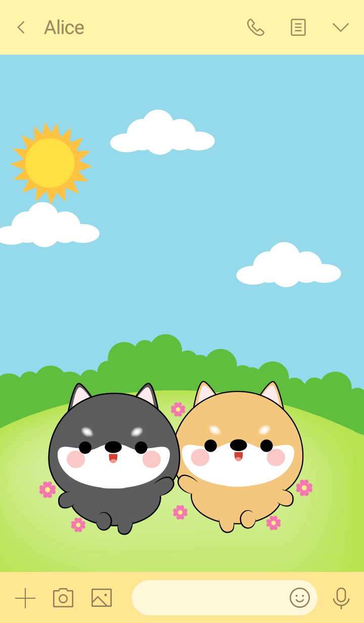 Mini Shiba Inu & black Shiba Inu (jp)