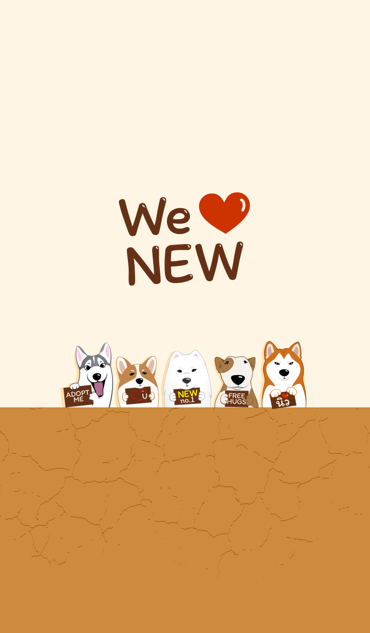 We love NEW