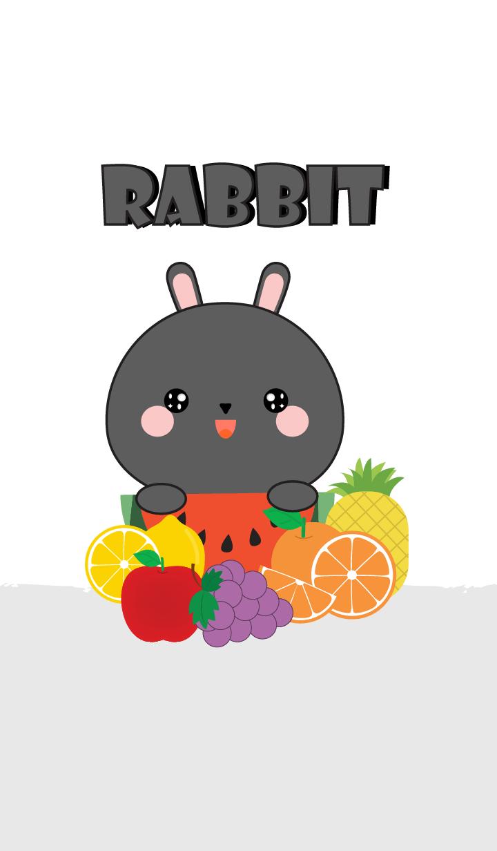 Black Rabbit With Friut Theme