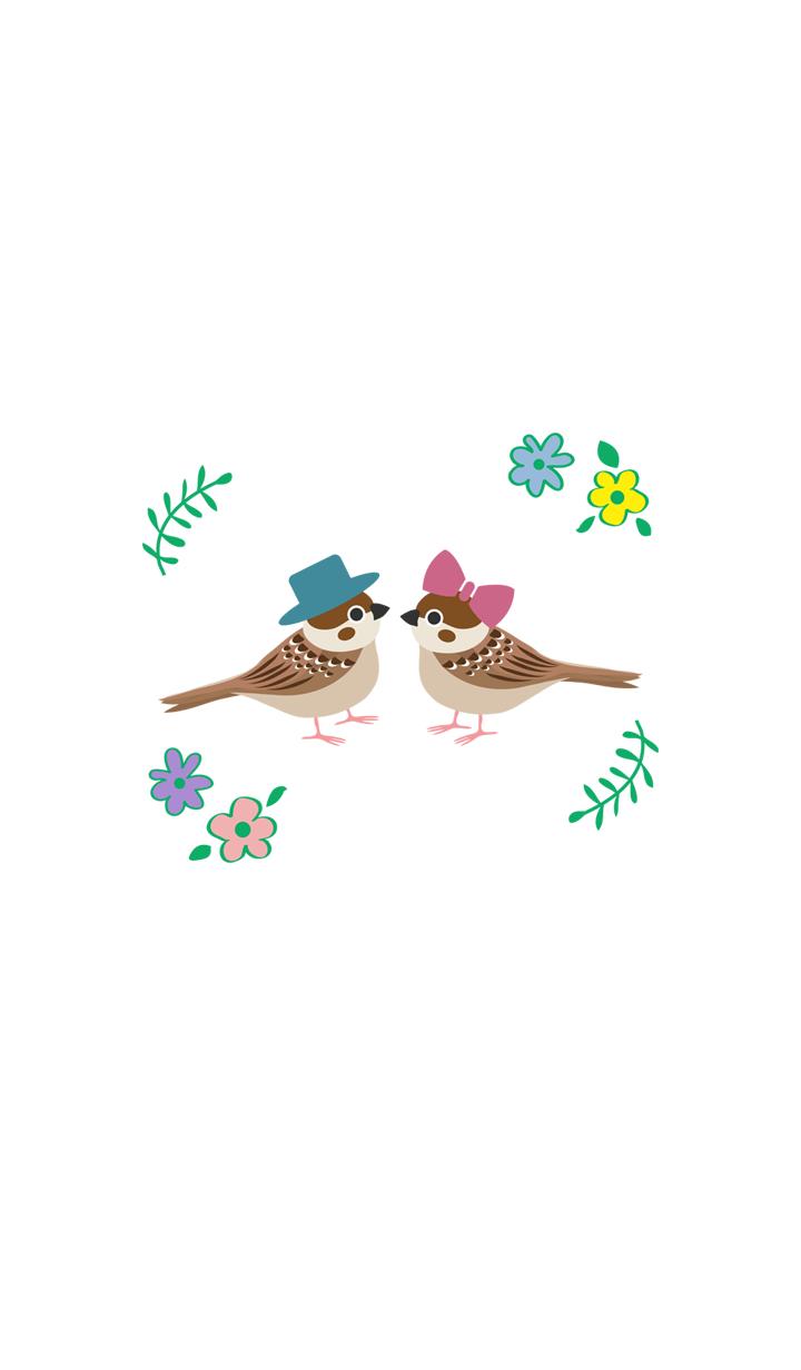 Cute sparrow couple stall-flowers
