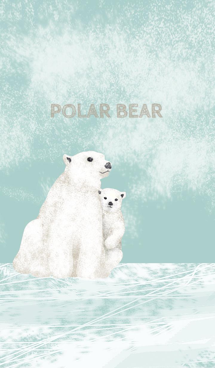 POLAR BEAR/Brown17
