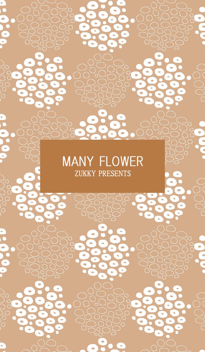 MANY FLOWER67