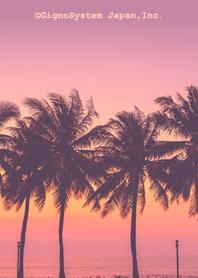 Sunset Beach. (fc)