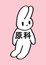 HARASHINA by nekorock no.10601