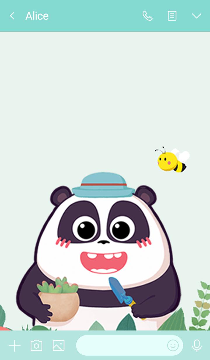 Panda Pange & Succulent Forest