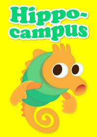 Hippocampus !