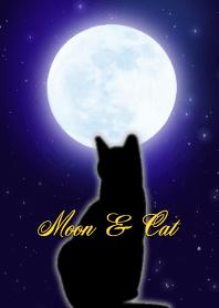 Moon & Cat