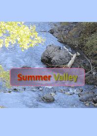 夏天的山谷