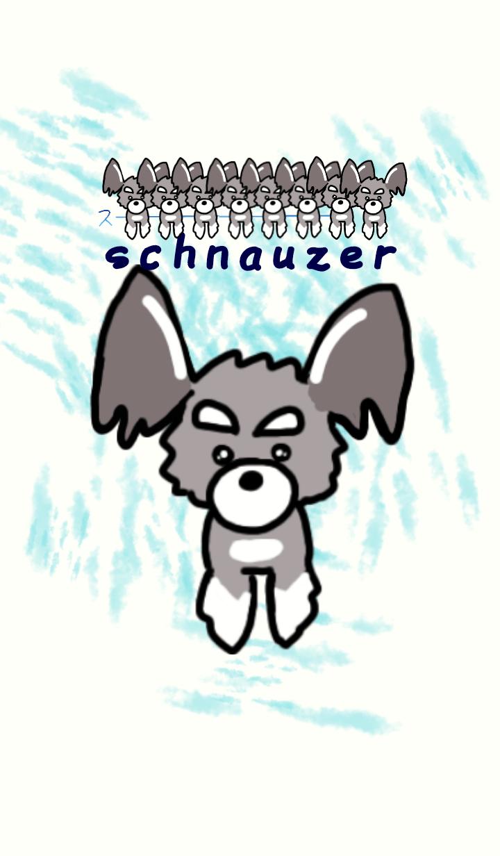 loose schnauzer 1