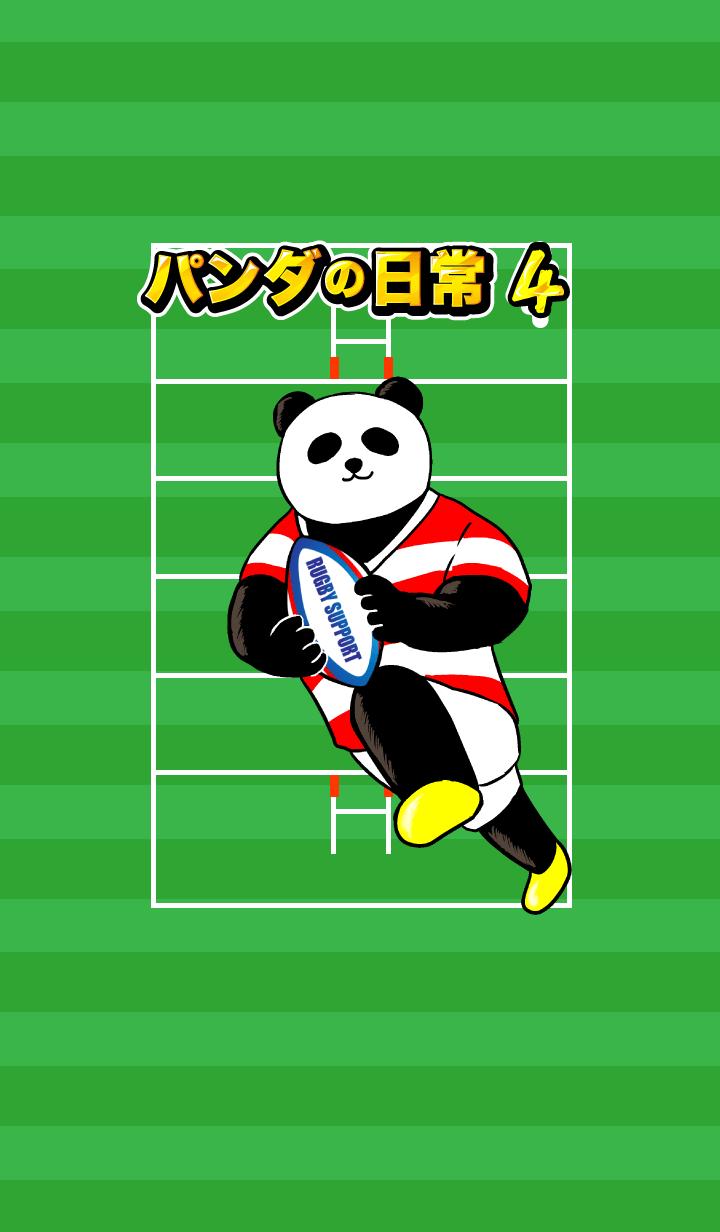 熊貓的日常生活4橄欖球!