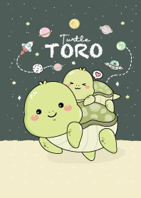 Toro Turtle : Green mid night