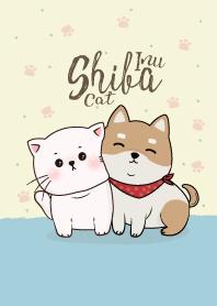 Shiba Inu & Cat.