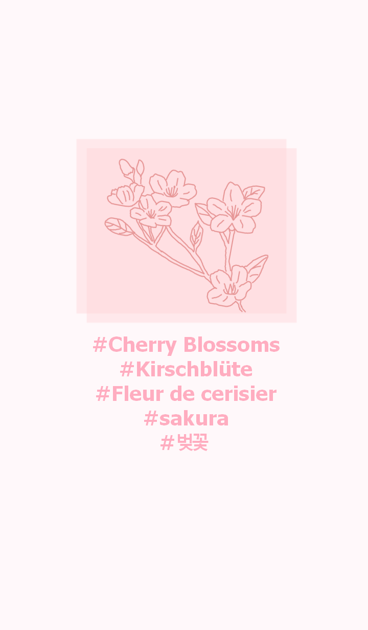#flower Cherry Blossoms(pink)