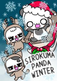 SIROKUMAPANDA winter