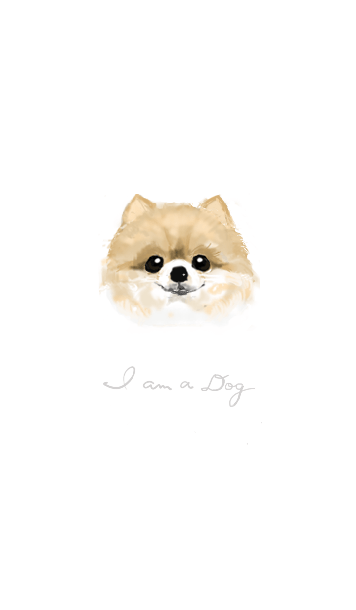 I am a dog -Pomeranian- :E
