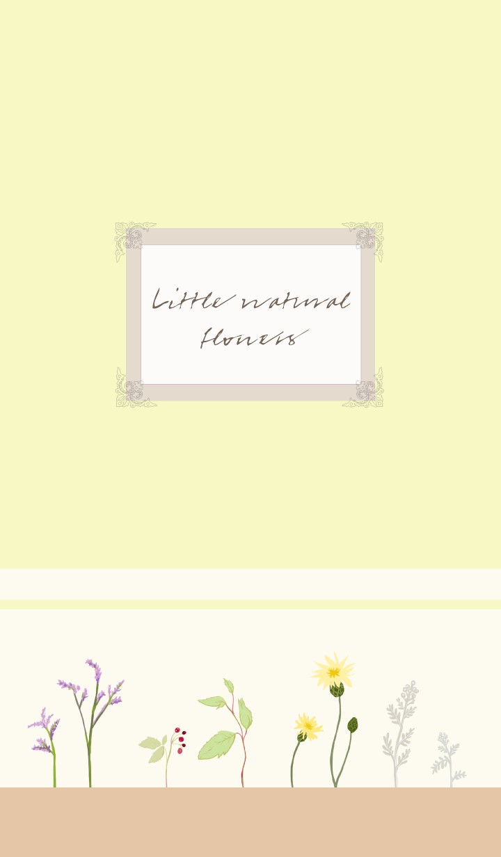 Little natural flowers -power-