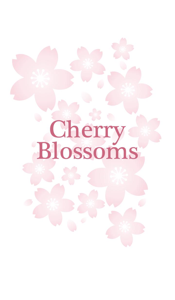 桜6(ピンク)