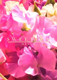 SWEET PEA -MEKYM- 4