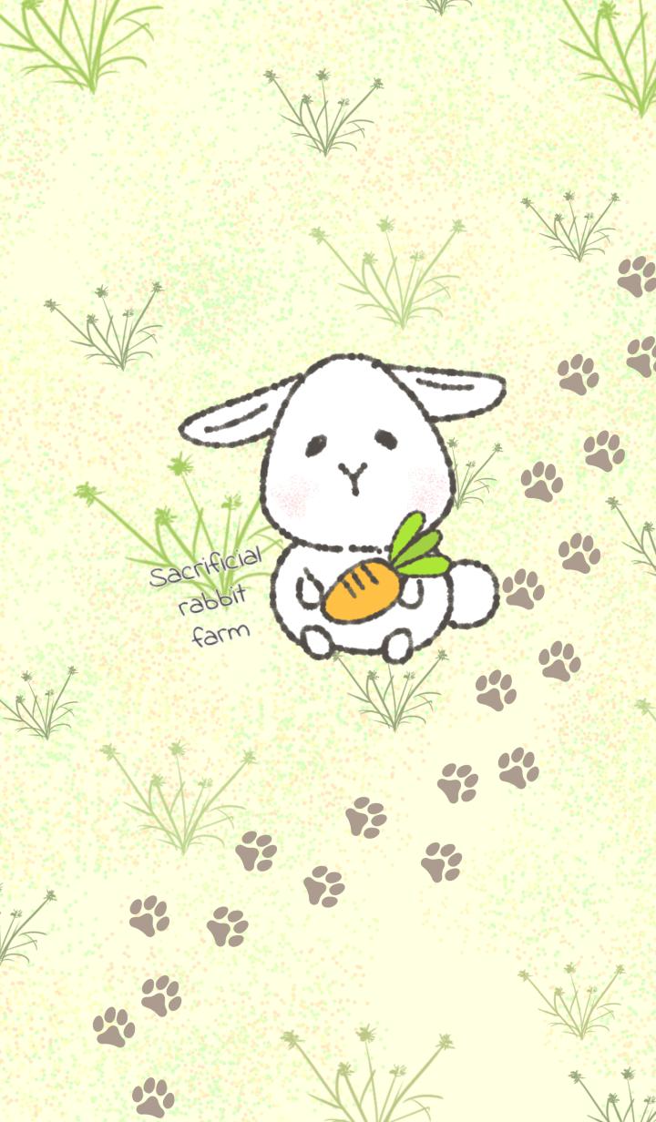 Sacrificial rabbit farm