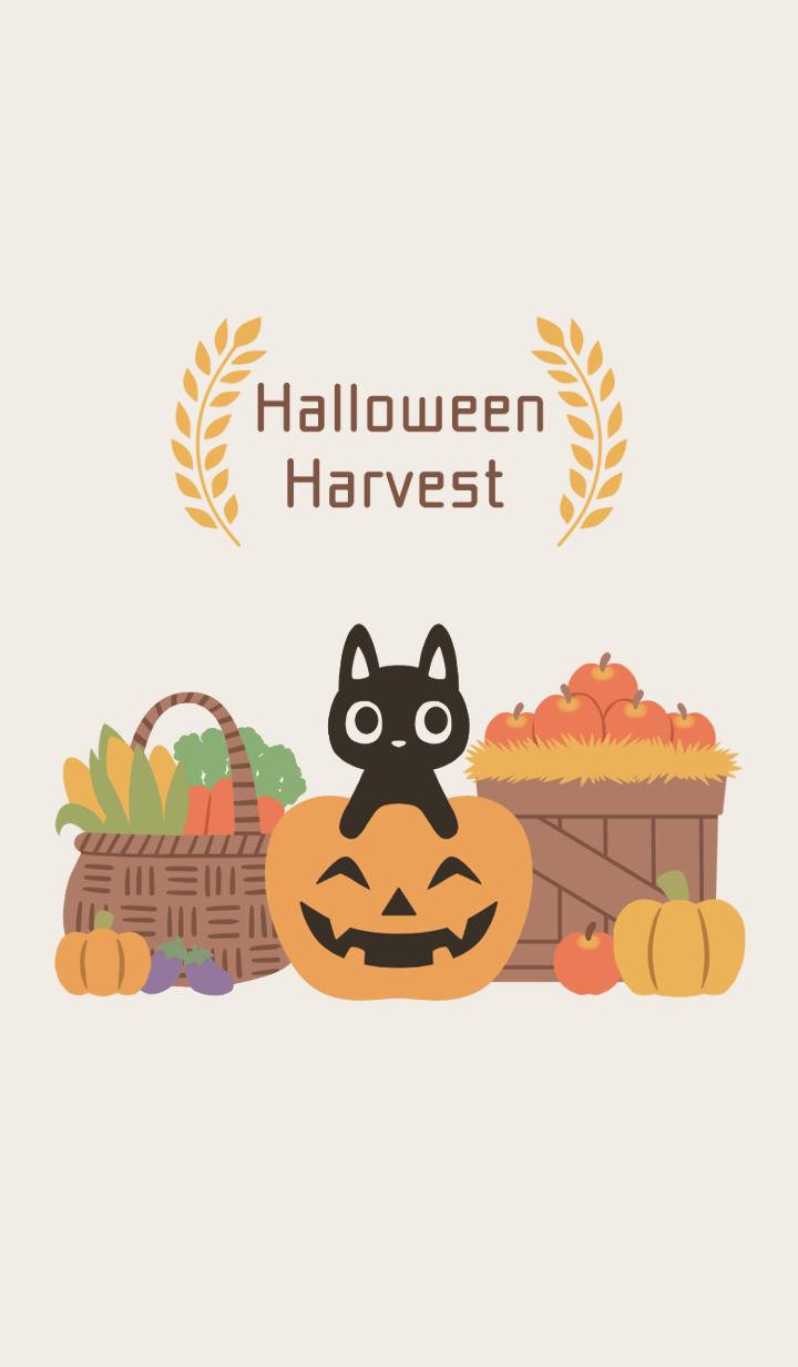 Halloween Harvest Halloween2019
