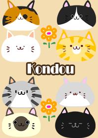 Kondou Scandinavian cute cat