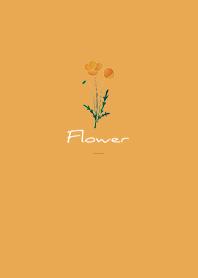 Orange : Flower